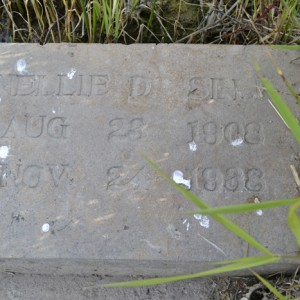 The old tombstone of Nellie Selk lays along the bank of the Stirling Fish Pond.