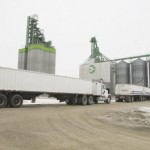 Cargill grain elevator in Viking.