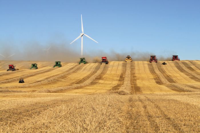 combines in a row harvesting a field