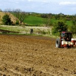 tractor planting a crop in a field