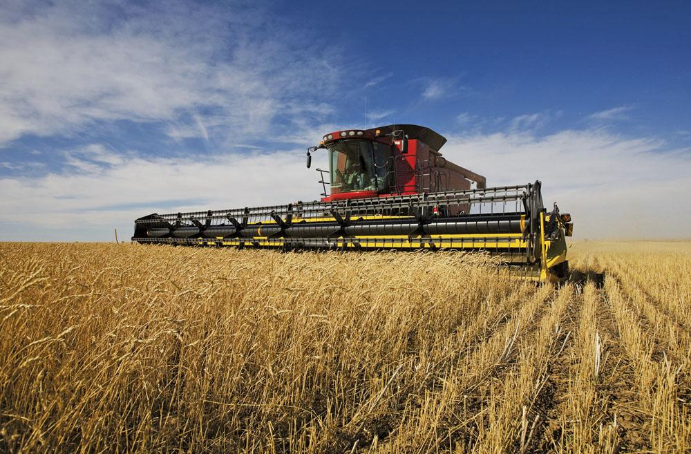 "Gaining more efficiency in ""labour, power, and machinery"" is the key to bigger profits, says Saskatchewan farmer Kristjan Hebert."