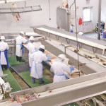 The Canadian Meat Council says there are about 1,000 vacancies in meat-packing plants across the country.