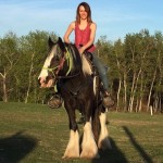 Krista Critch was one of many volunteers who helped to save horses and pets from the Fort McMurray wildfire.