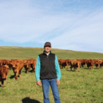 Gerald Vandervalk watches both the cattle and currency markets and locks in when he's happy with the price he'll receive.