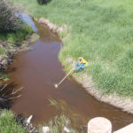 An Alberta Agriculture and Forestry employee samples a creek to help determine if BMPs are improving water quality.