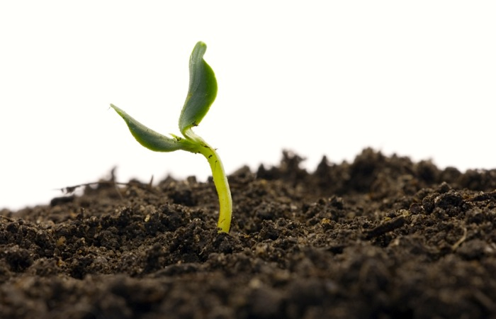 How to build a soil-health bank account
