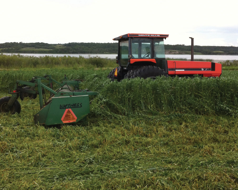 Producer Steve Snider manages weeds the mechanical way, using mow tilling (pictured), harrowing, and plowing to tackle tough weeds like Canada thistle.