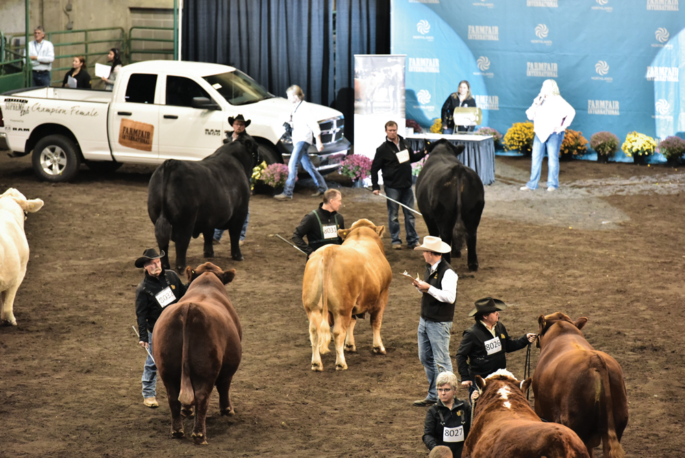 The Alberta Supreme Show features breed champions from all three of the top cattle shows in Alberta to name two Alberta Supreme Grand Champions. It takes place Nov. 11 at 4 p.m. in Hall D.