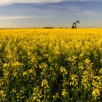 Orphan wells a growing problem for Alberta farmers