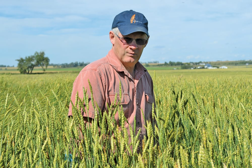 Mark Gibeau credits the success of his organic heritage grain business to the connections he's built with bakers and chefs.