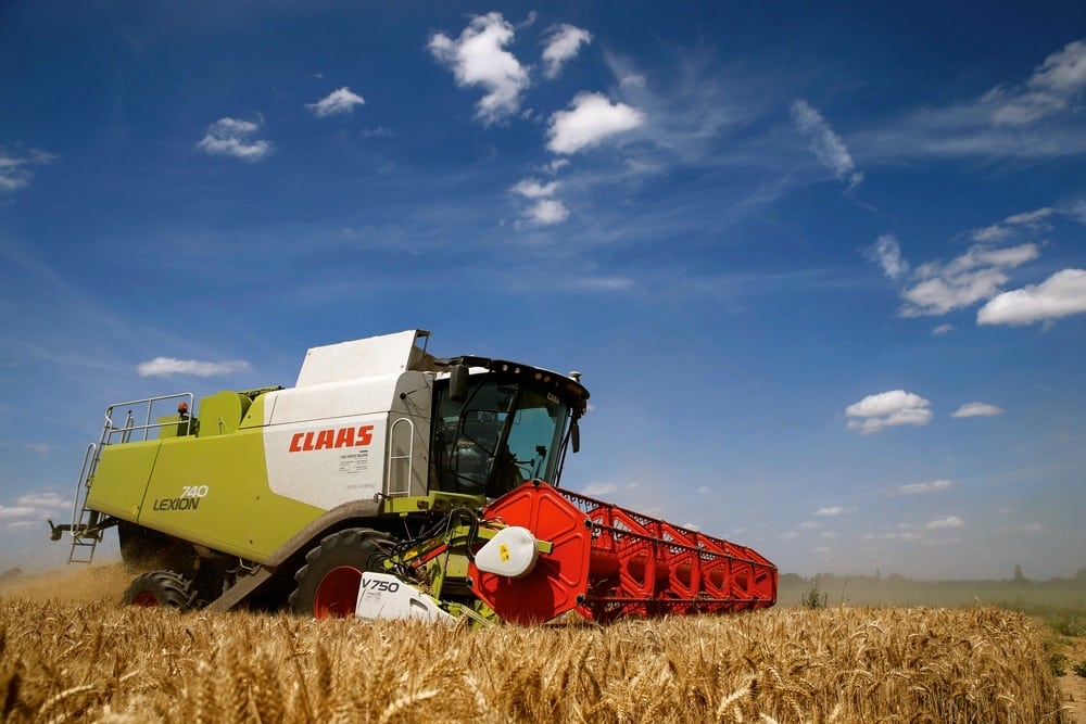 Wheat being harvested in northern France last month — an extremely hot, dry summer has analysts predicting production in Europe's largest wheat-producing country could fall by three million tonnes this year.