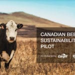 A pilot program that pays producers who raise cattle according to a set of specific sustainable standards is catching the attention of other ranchers, says Anne Wasko, the new chair of the Canadian Roundtable for Sustainable Beef.