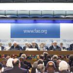 (Giuseppe Carotenuto photo courtesy FAO)