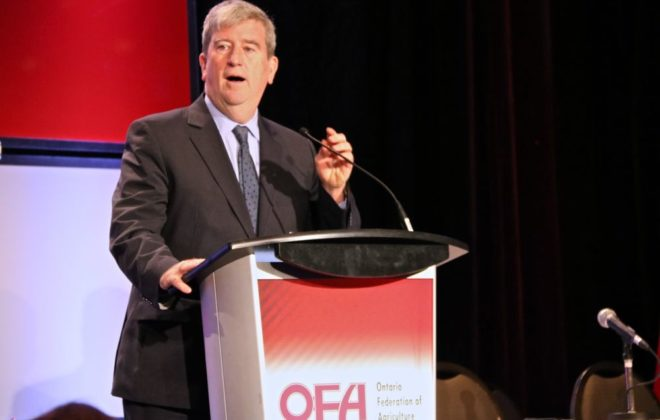 Ontario Environment Minister Glen Murray spoke about his understanding of agriculture at the recent OFA annual meeting. (John Greig photo)