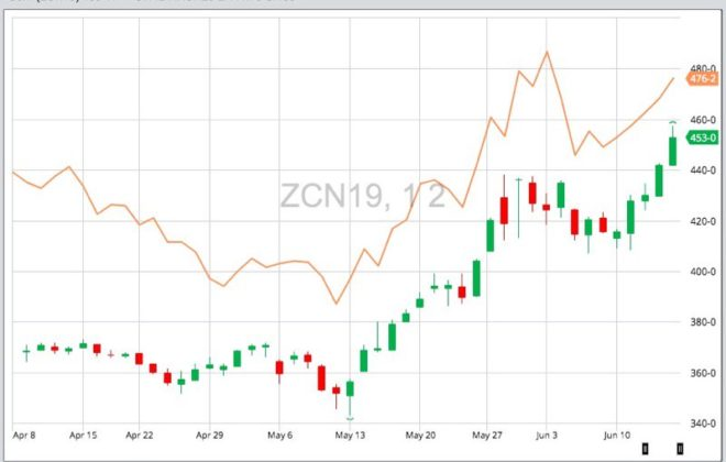 CBOT July 2019 corn (candlestick chart) compared to K.C. July 2019 wheat (orange line). (Barchart)