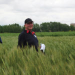 Hands-on plant breeding: Farmers help select new plant lines