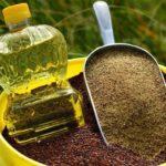 Canola seed, oil and meal. (Photo courtesy Canola Council of Canada)