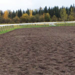 What's underfoot has a big effect on horse soundness