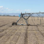 Pivots that used to sink into the soil on Brendon Rockey's farm was one of the signs that something was wrong with the soil structure, 