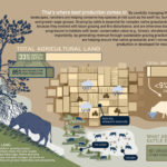 A portion of an infographic called Beef's place in a healthy environment that was one of the most popular items produced by the Beef Cattle Research Council last year.