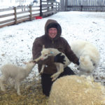 Sheep industry starts new organization to tackle challenges