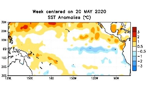 Sea surface temperature anomalies on the tropical Pacific Ocean for the week centred on May 20, 2020. (CPC.ncep.noaa.gov)