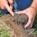 There are many attributes of healthy soils — and many definitions of what healthy soil is. But producers can cut through the confusion by keeping in mind five principles.