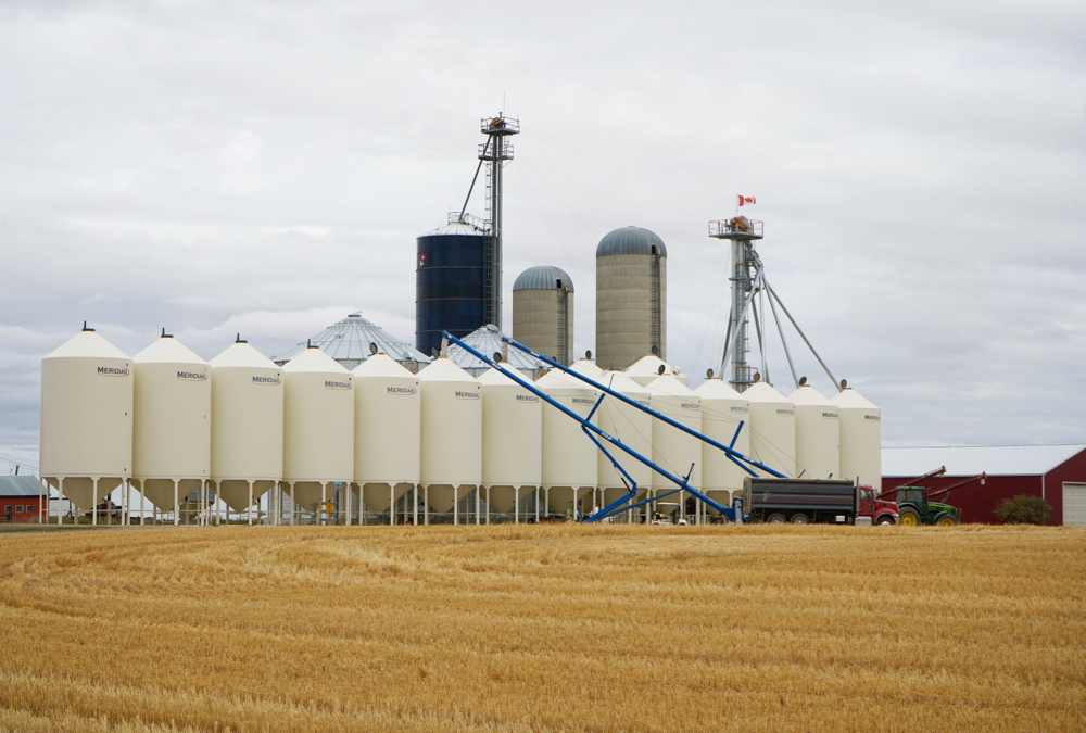 Not everyone has as many bins to fill as this operation east of Didsbury, but most producers in Alberta had their crops off the field much earlier this year. However, yields and quality were a mixed story across the province.