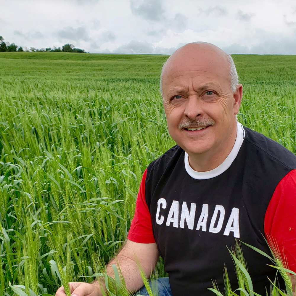 There are several short-term reasons why things are going well right now, but Alberta Wheat chair Todd Hames says behind those factors is Canada's reputation as a reliable supplier of high-quality grain. Supplied