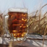 Malt growers have many reasons to raise a glass this year