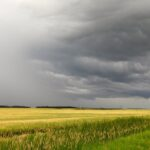 Alberta weather disasters make Top 10 in 2020
