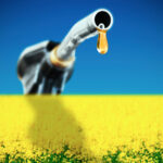 Ottawa's new Clean Fuel Standard could be a big win for canola growers, says the Canola Council of Canada.