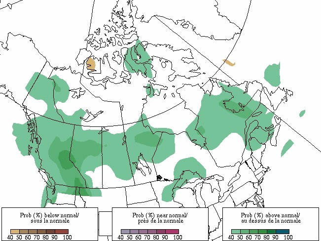Forecast probability of precipitation above, below and near normal for the period from February through April 2021, based on three equiprobable categories from 1981-2010 climatology. Map produced Jan. 31, 2021. (Map: Environment and Climate Change Canada)