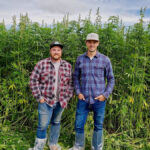 There is a growing global market for both hemp fibre and hurd, says Canadian Rockies Hemp CEO Aaron Barr (on right, with company COO Spencer Tighe).