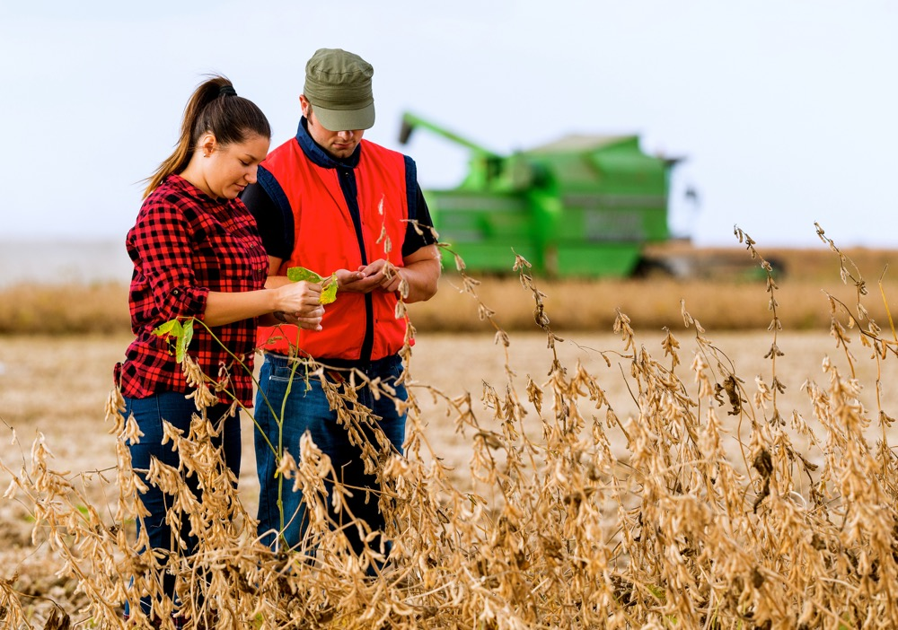 China offers the sorts of opportunities that Canada's ag and food sector should capitalize on.