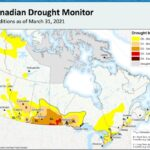 Prairies hit hard by drought