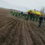 On its way: Seeding canola with corn planter slowly gaining converts