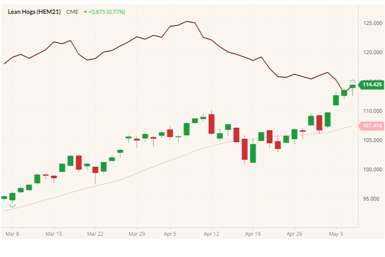 CME June 2021 lean hogs (candlesticks) with 20-day moving average (pink line) and June 2021 live cattle (dark red line). (Barchart)