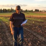 Strong wheat yields possible in ultra-early seeding system